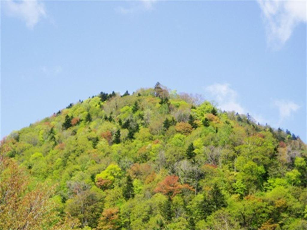 自然のいたずら〜「春紅葉」。山々の繊細な彩りは、この時期にしか出合えない美しい景観です。