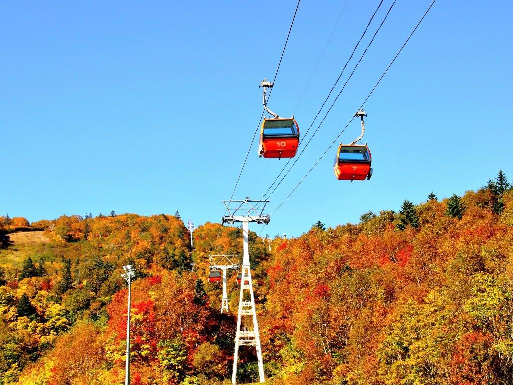 定山渓温泉から道道1号線を小樽方面へ車で約30分、ゴンドラに乗って紅葉を楽しみながらの空中散歩。
