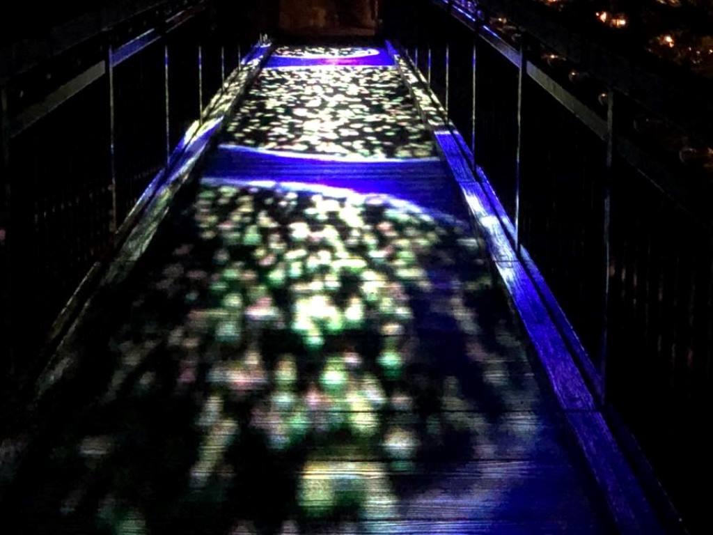 Jozankei Nature Luminarie。幻想的な灯りに包まれ、夜の森をお散歩。