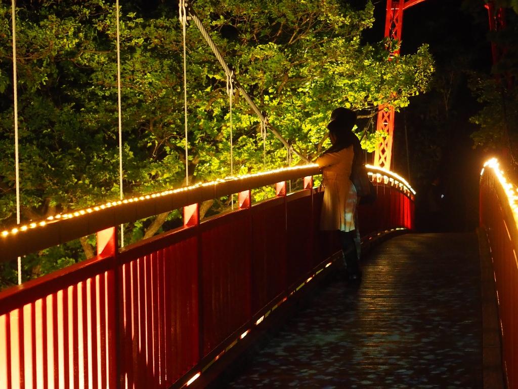 定山渓の夜。美しくライトアップされた景観も二人の想い出に。