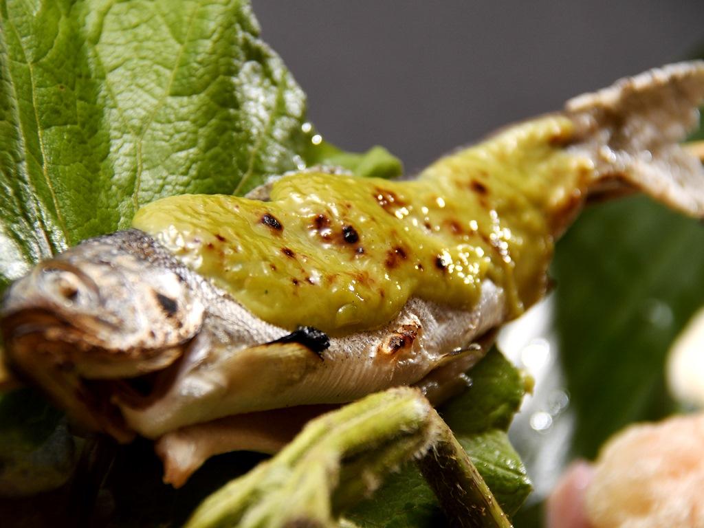 ふり塩して焼いた姫鱒は、じゃがいものペーストを練り込むことでまろやかに仕上げた木の芽味噌で。