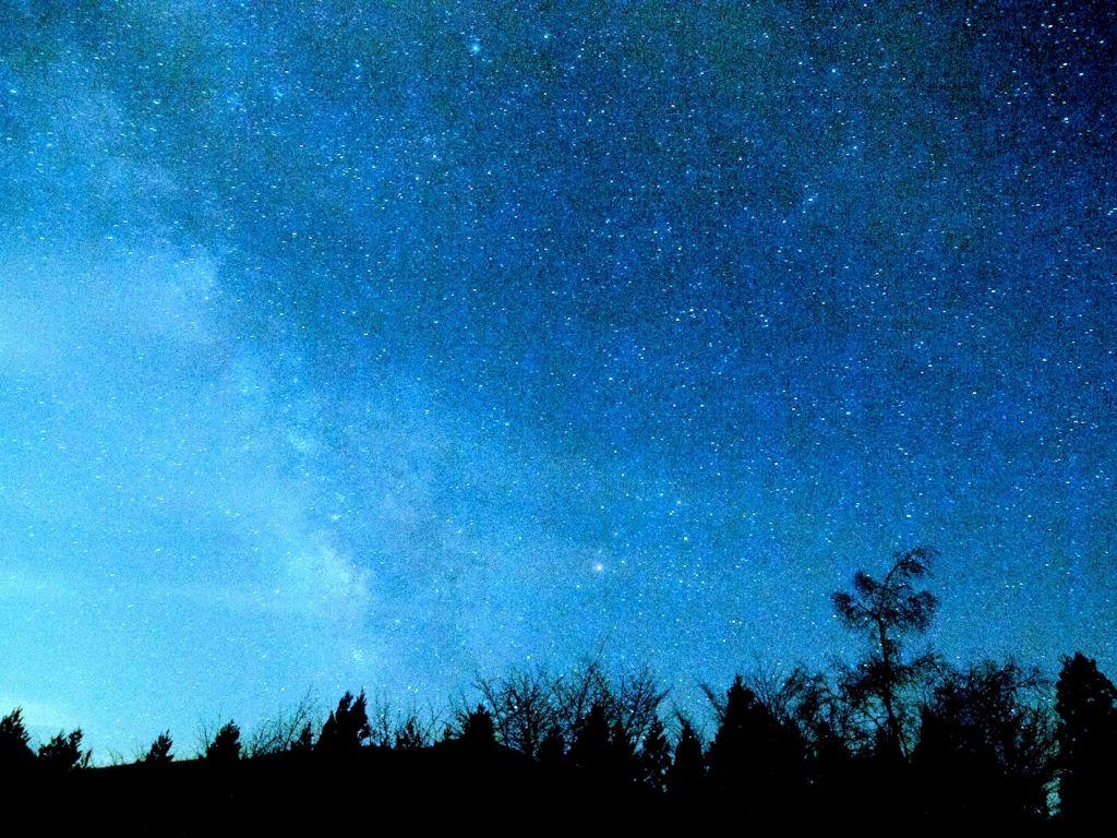 二人でランタン片手に星空ガーデン散策をお愉しみください。