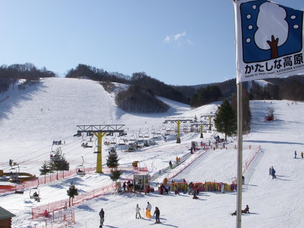 関東唯一のスキーヤー専用スキー場。ファミリースキーヤーも安心。