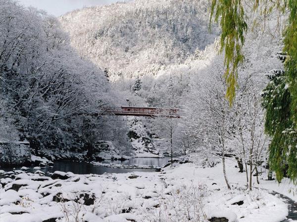定山渓の豊かな自然を眺めながらお過ごしください