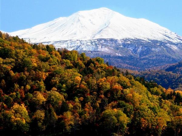 【旭岳★秋】10月中旬頃まで美しい積雪と紅葉のコントラストを楽しめます