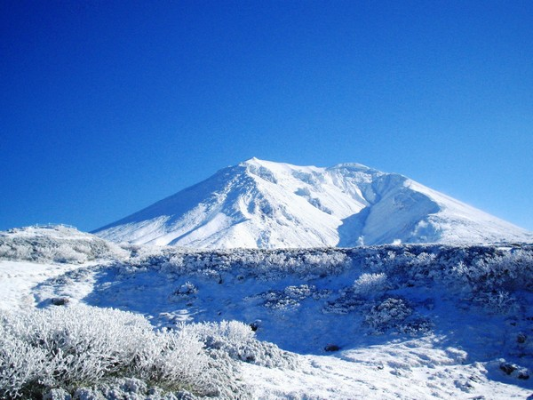 北海道最高峰・旭岳と樹氷のコントラストが美しい