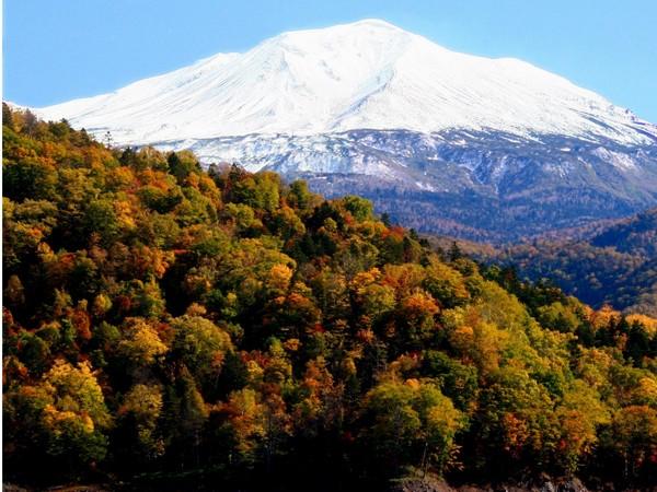 10月中旬頃まで美しい積雪と紅葉のコントラストを楽しめます!