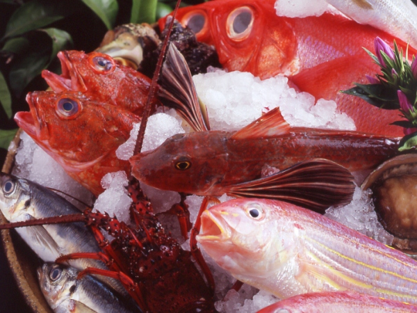 【海の幸イメージ】調理長が厳選した新鮮海鮮をお好きな食べ方で