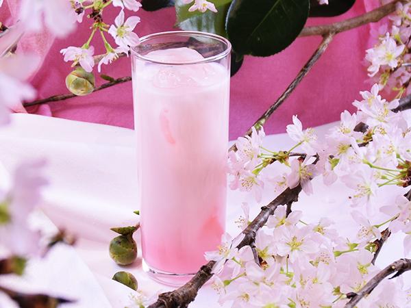 【2017たきもと春まつり】桜ミルク(カクテル)