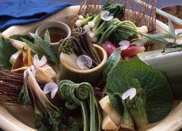 春のイメージ(山菜)