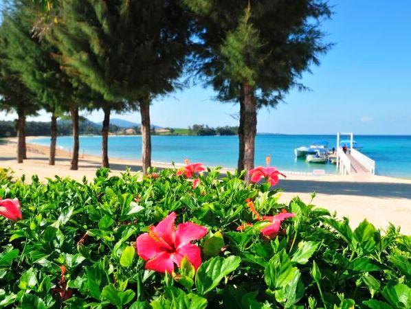 東シナ海を眺めながら極上の時間をお過ごしください。