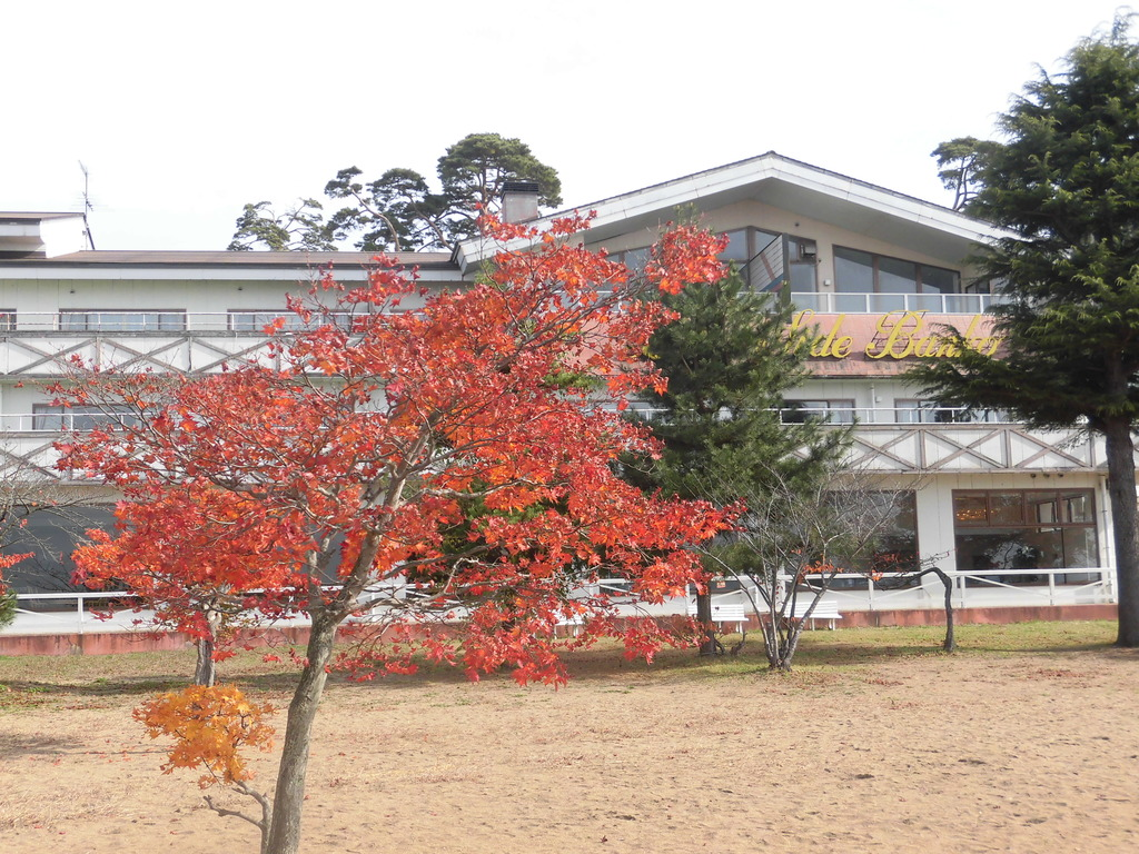 秋の志田浜と外観