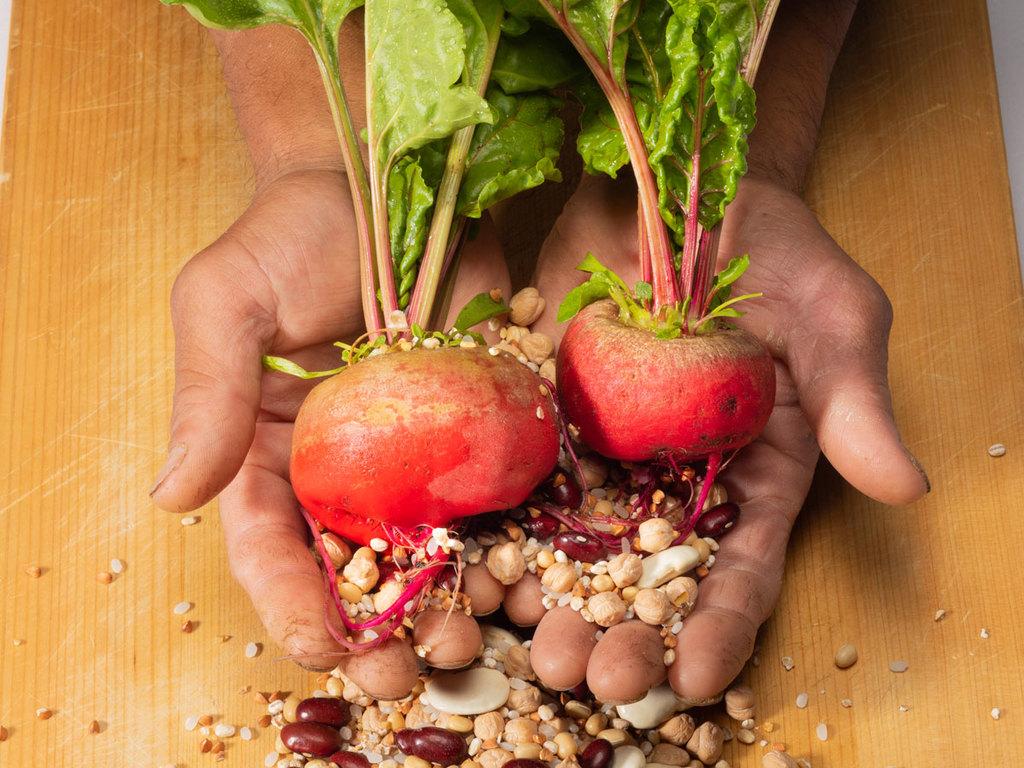 〜秋の菜園からのインスピレーション〜最新のブラス哲学の詰まった洞爺だけの特別な料理を心ゆくまで