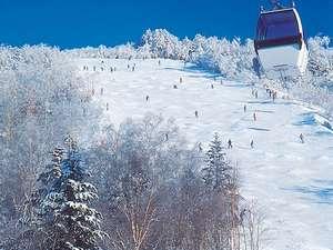 ハンターMt.スキーリゾートからいちばん近い温泉!
