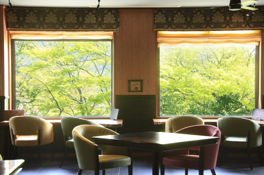 緑の景色を心行くまでお楽しみください。