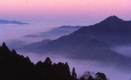 君尾山の雲海