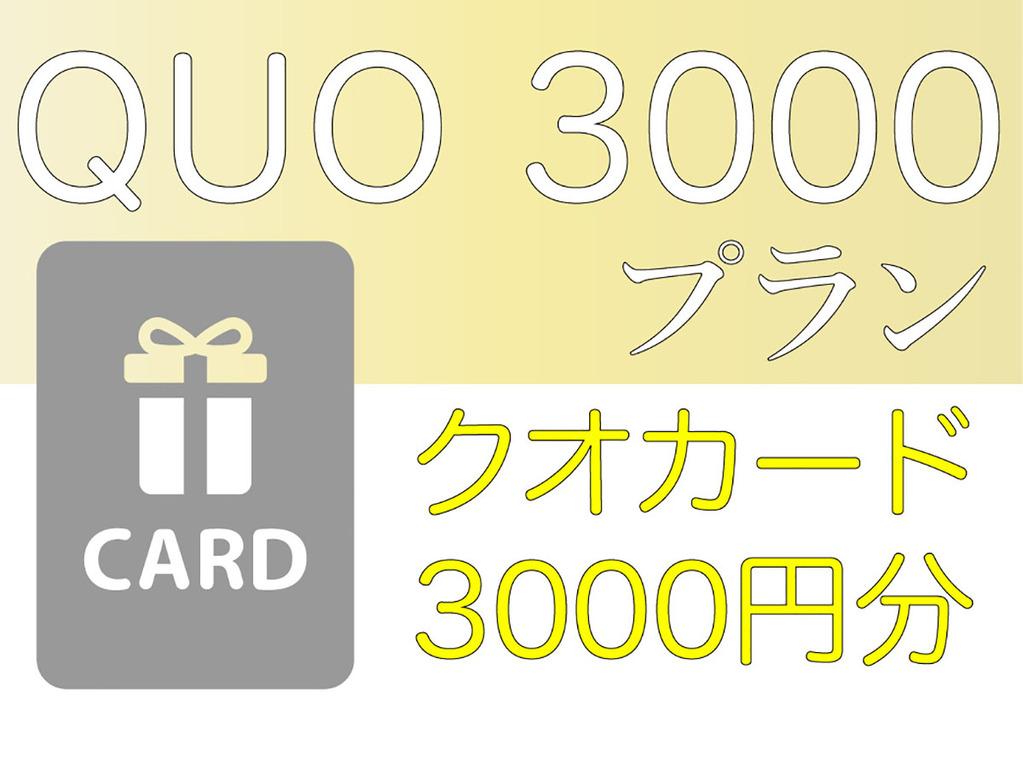 クオー3000プラン