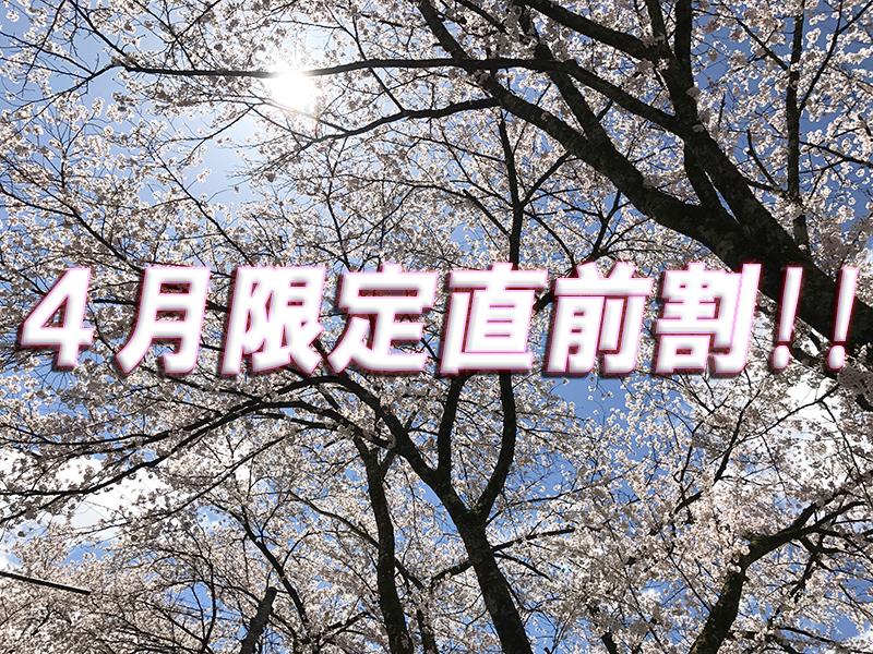桜スポットめぐり☆新年度最初の直前割引プラン