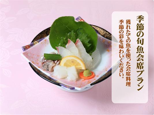 季節の旬魚プラン