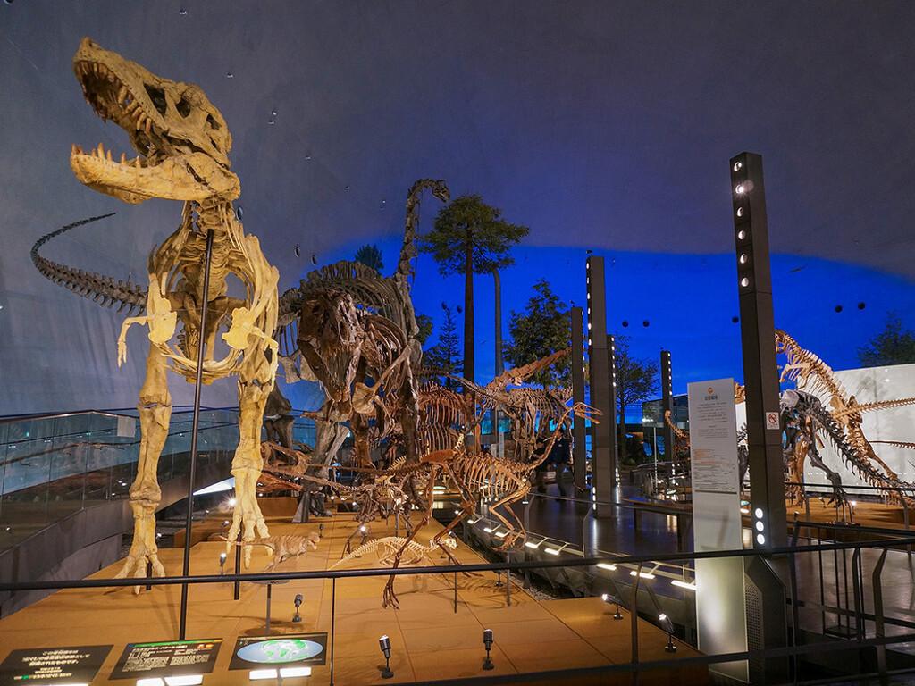 福井県立恐竜博物館イメージ