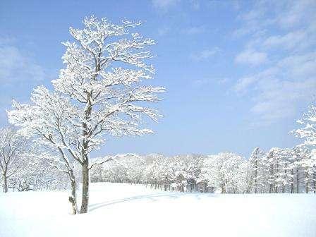 澄んだ空気が綺麗な風景を生み出します