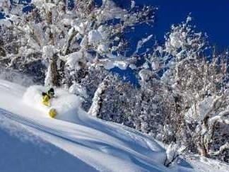 キロロ スキー