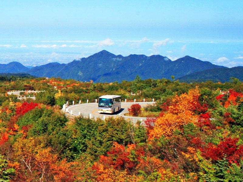 秋の弥陀ヶ原と高原バス