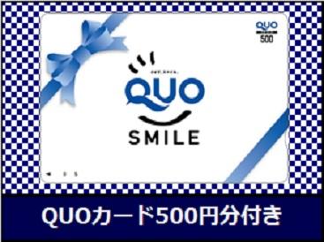 QUOカード500円分付