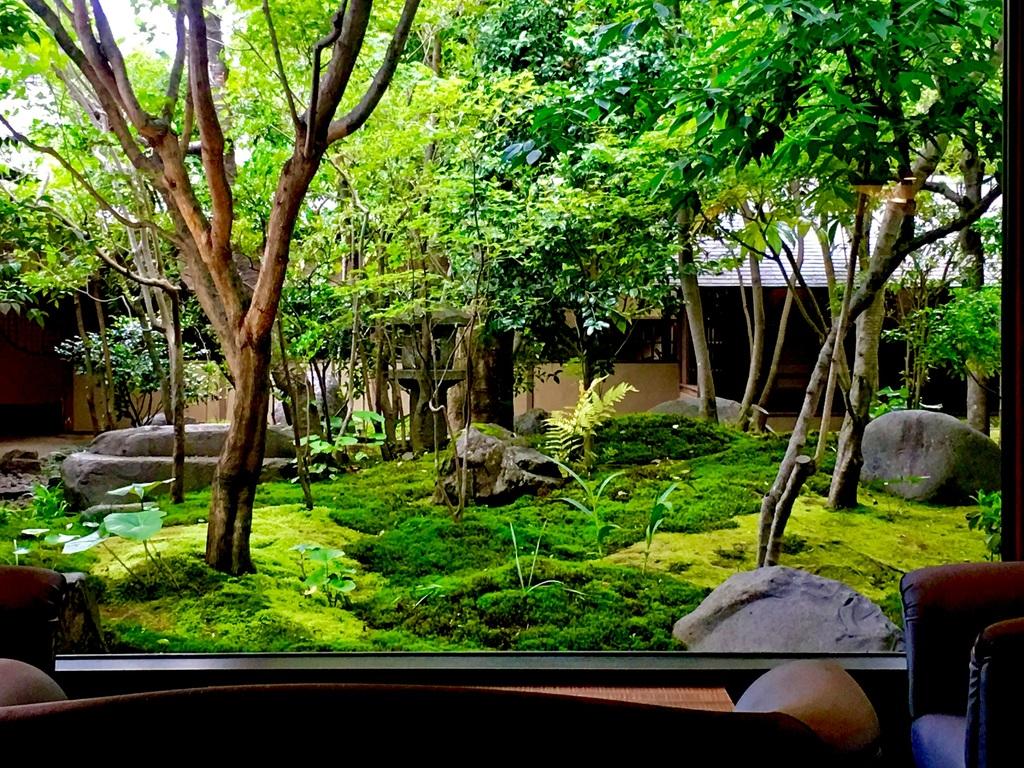 雨の中庭風景