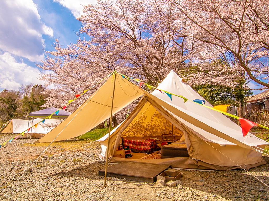 春には桜、夏には蛍、自然豊かな河原でグランピングができるのは、コモリバだけ!
