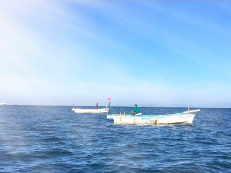 船で沖へ出て釣り体験♪ 釣り道具のご用意もあるので手ぶらでも楽しめます♪