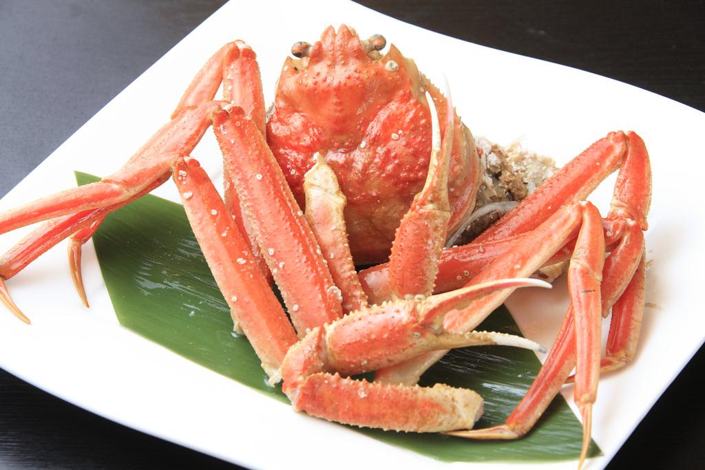 【ずわい蟹フェア】今年の冬はどこで蟹を愉しみますか?
