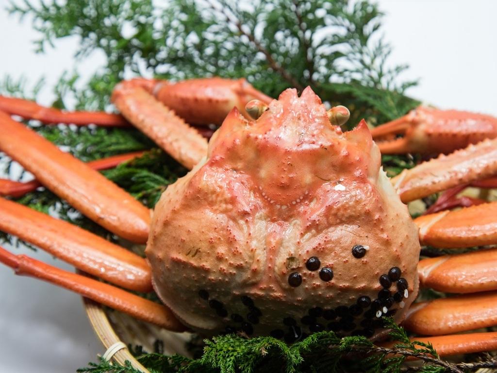 日本の冬といえば『蟹』!お一人様一杯プレゼント!