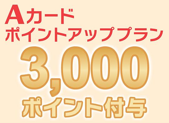3000P付