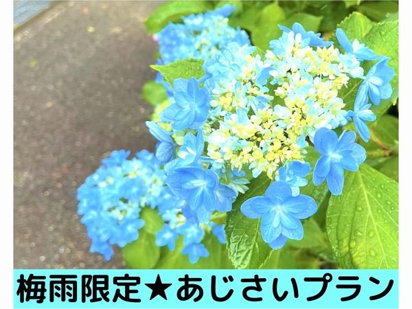 【梅雨限定★あじさいプラン】