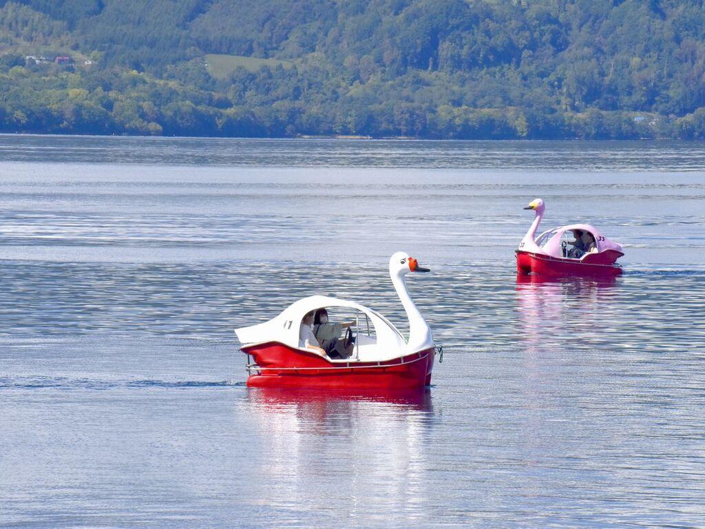 洞爺湖名物「足漕ぎスワンボート」!モチーフにしたスイーツ「白鳥パンナコッタ」はバイキング会場にご用意