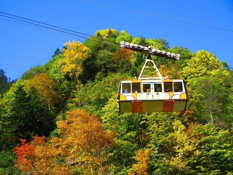 【黒岳ロープウェイ(秋)】日本一早い紅葉を空中から♪紅や黄色に囲まれ、秋を存分に感じられます。
