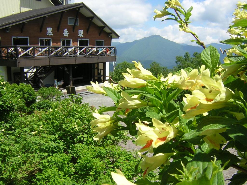 【黒岳駅】標高1300m地点。春から夏にかけては高山植物も見られます
