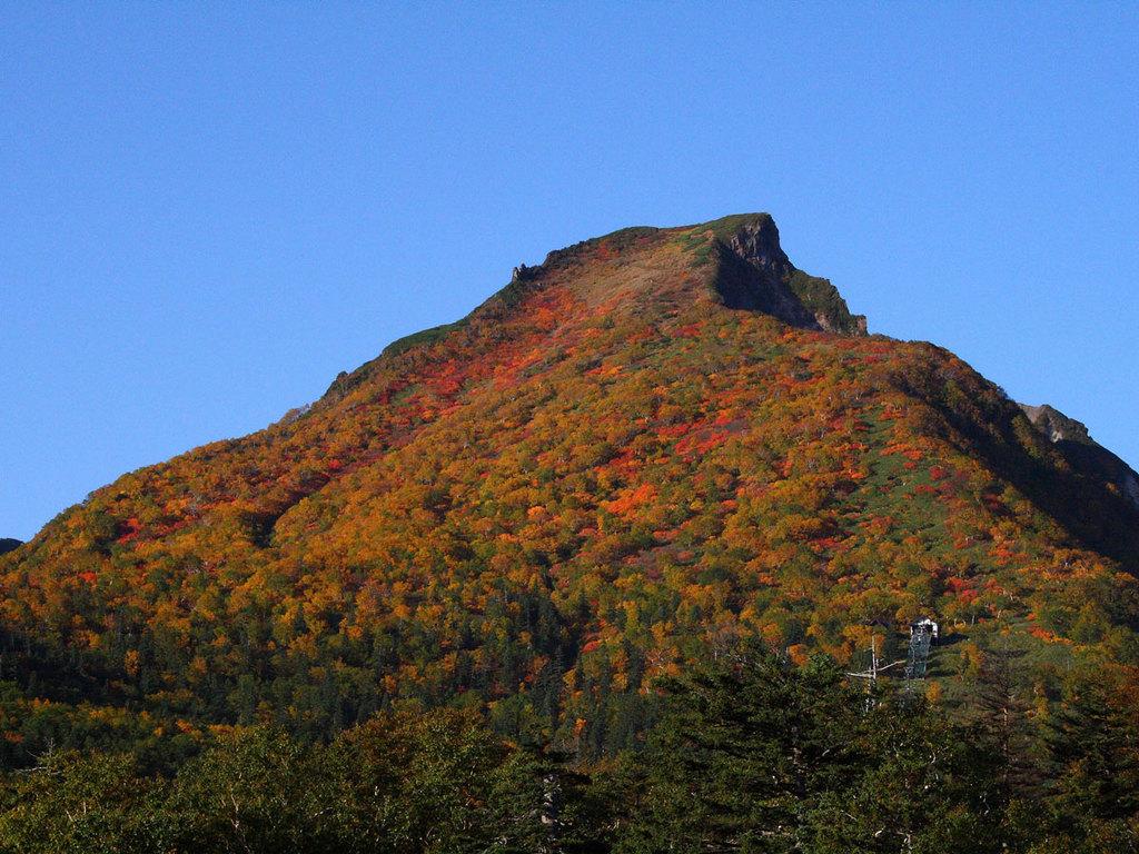 【黒岳山頂の紅葉】日本で最も早い紅葉が始まる黒岳。例年8月下旬より色づき始めます。