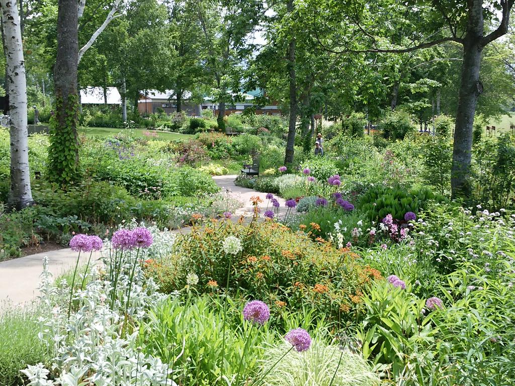 【大雪森のガーデン】季節の花と緑に心癒されます