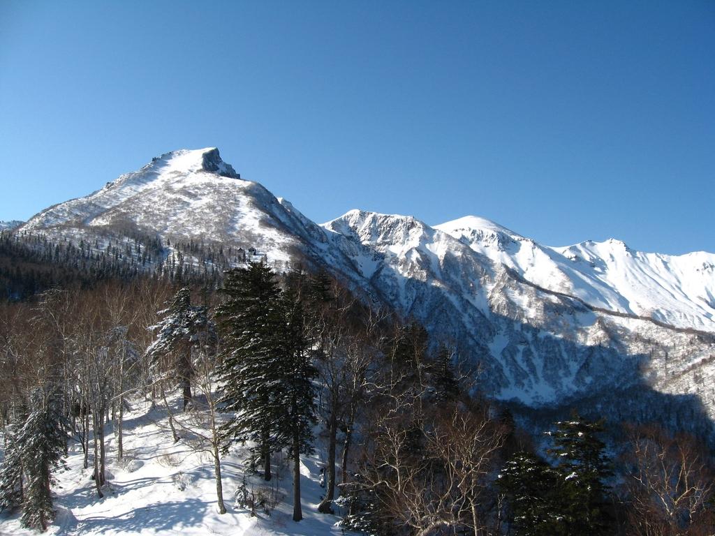 大雪山系が真っ白な雪に覆われた姿を一望