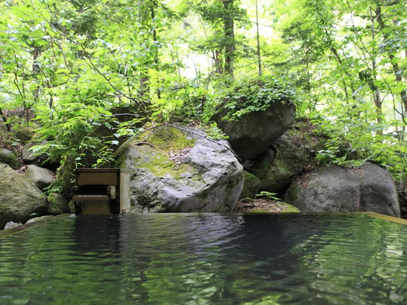 【大自然の湯「鳥の声」】森林浴をしているような気分が楽しめる露天風呂