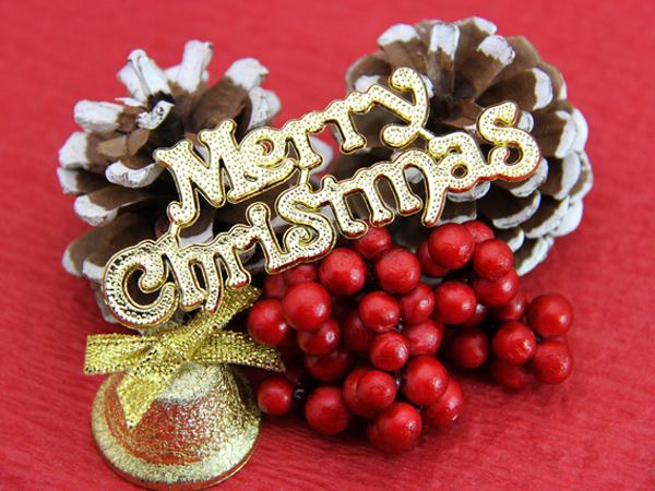 クリスマスの楽しい思い出を作りましょう♪