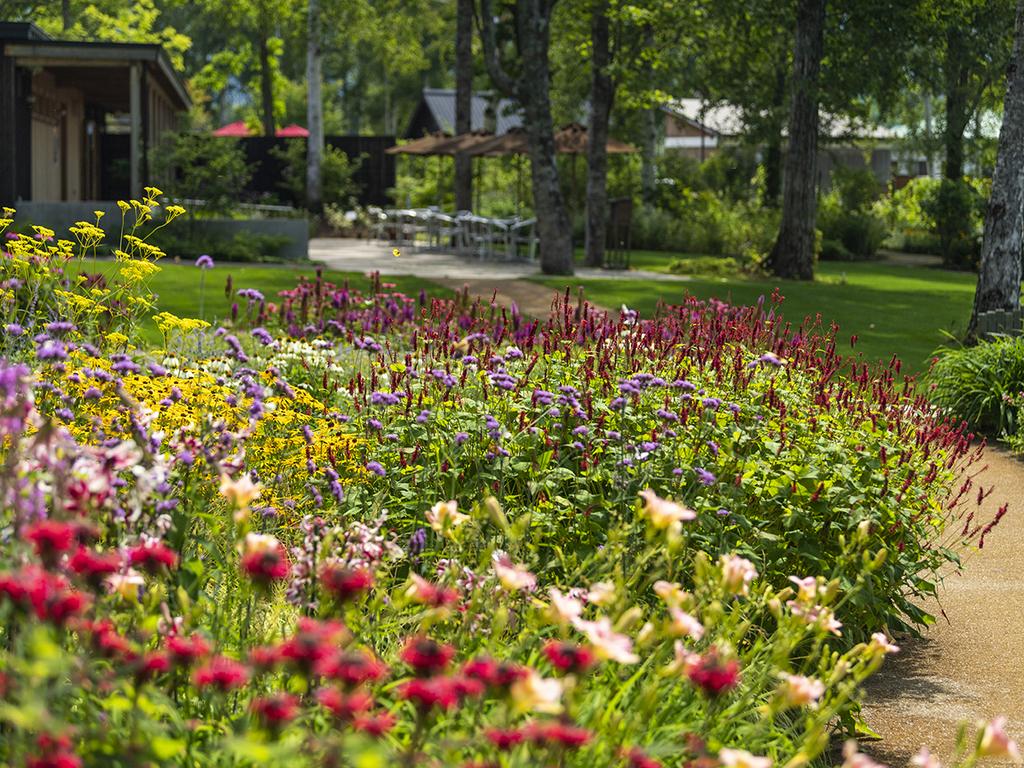 大雪森のガーデン】森の花園/季節ごとに可憐な花が競い合うように咲きます(9月上旬)