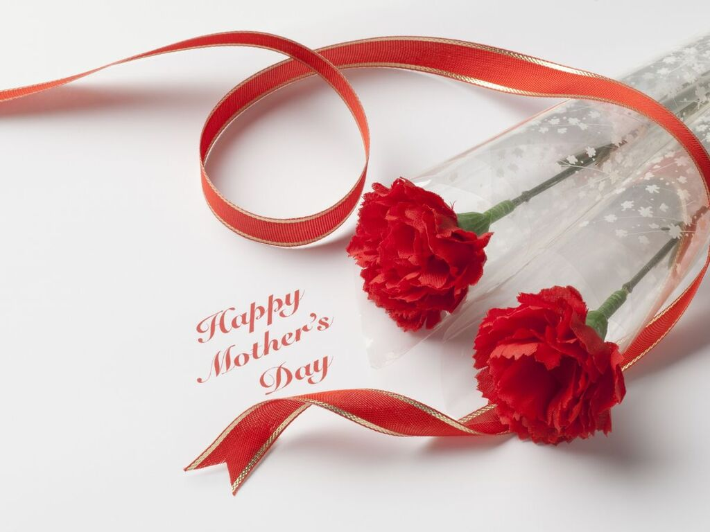 カーネーションの花言葉は「母への愛」 ※イメージ