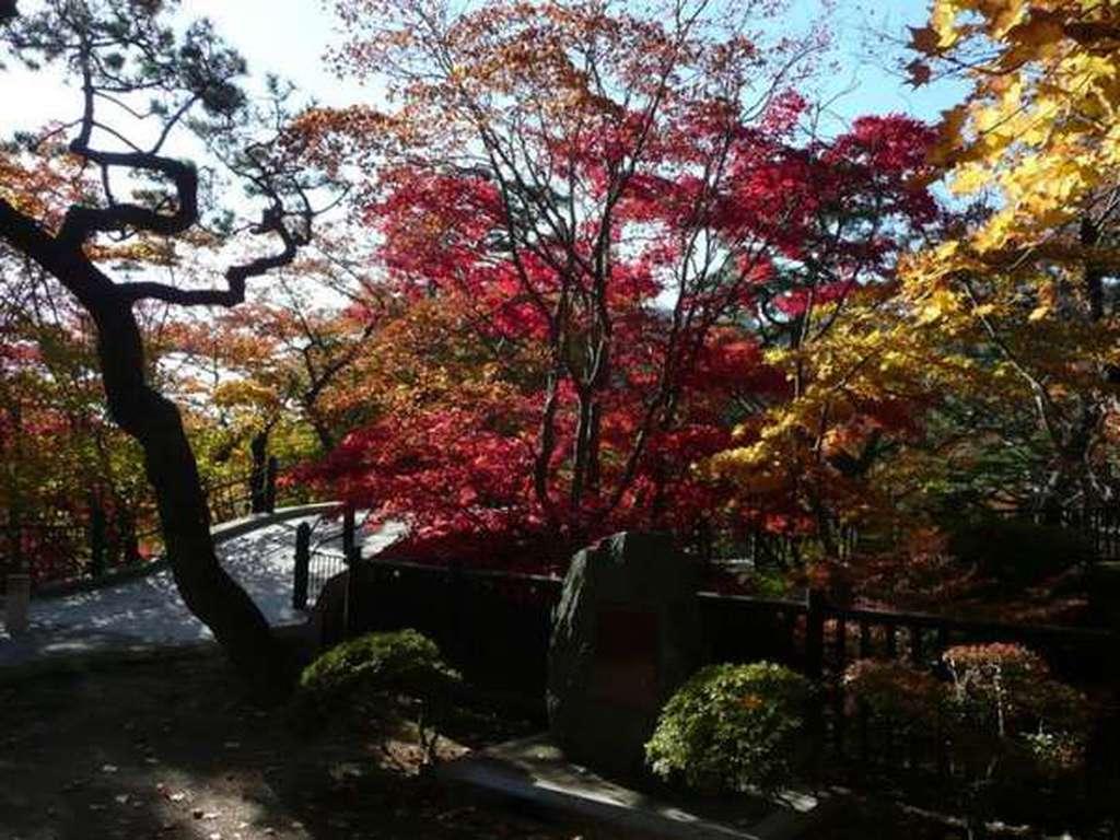 函館の紅葉名所「香雪園」