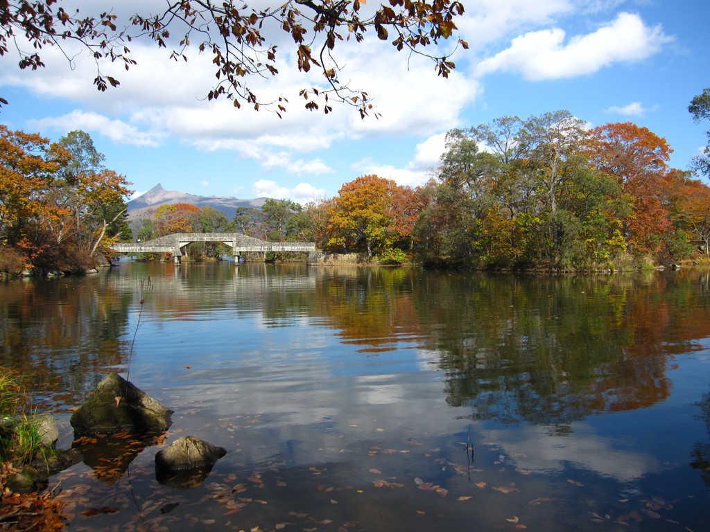 紅葉に包まれる秋の大沼公園