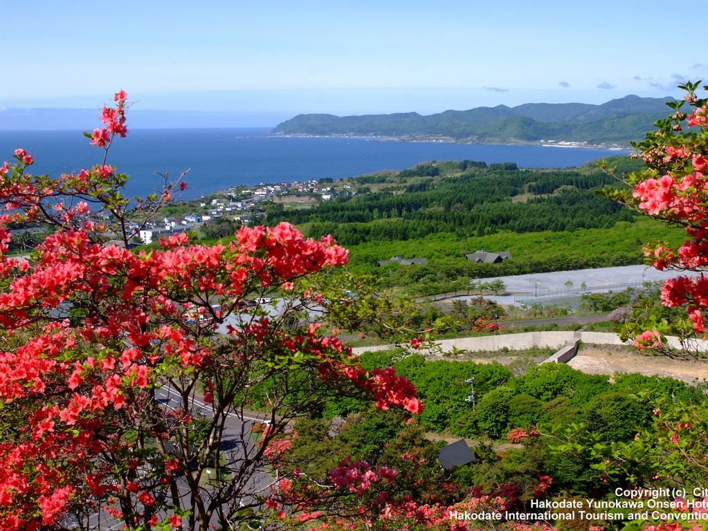 毎年5月下旬〜6月上旬に見頃をむかえるつつじ。60万本もの花々が咲き誇り、山裾が真紅に染まります。