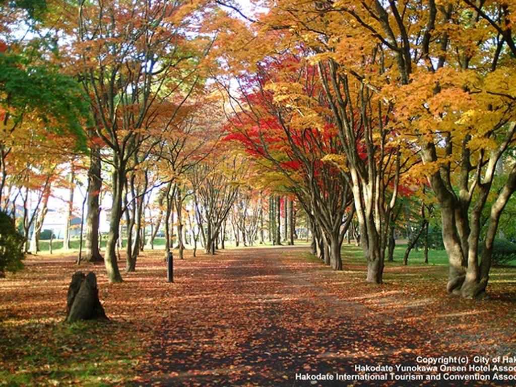 美しい紅葉の季節にぜひ当館へお越しください。