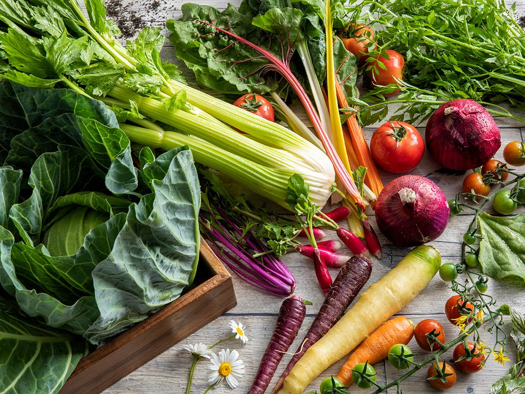 【ブッフェ一例】北湯沢近郊の採れたて野菜をふんだんに使用しております。